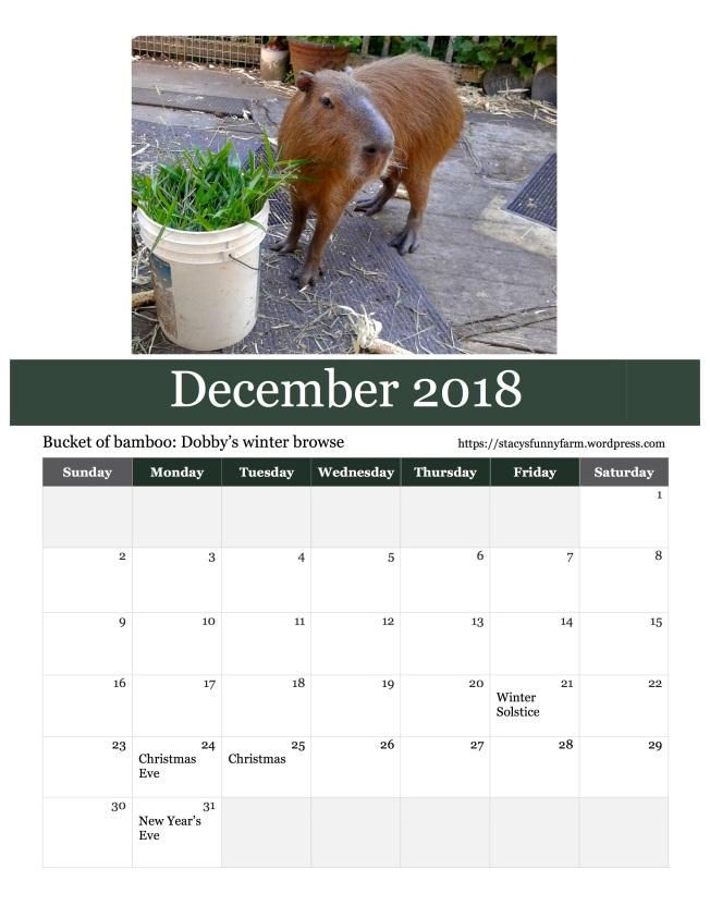 2018 dec SFF calendar