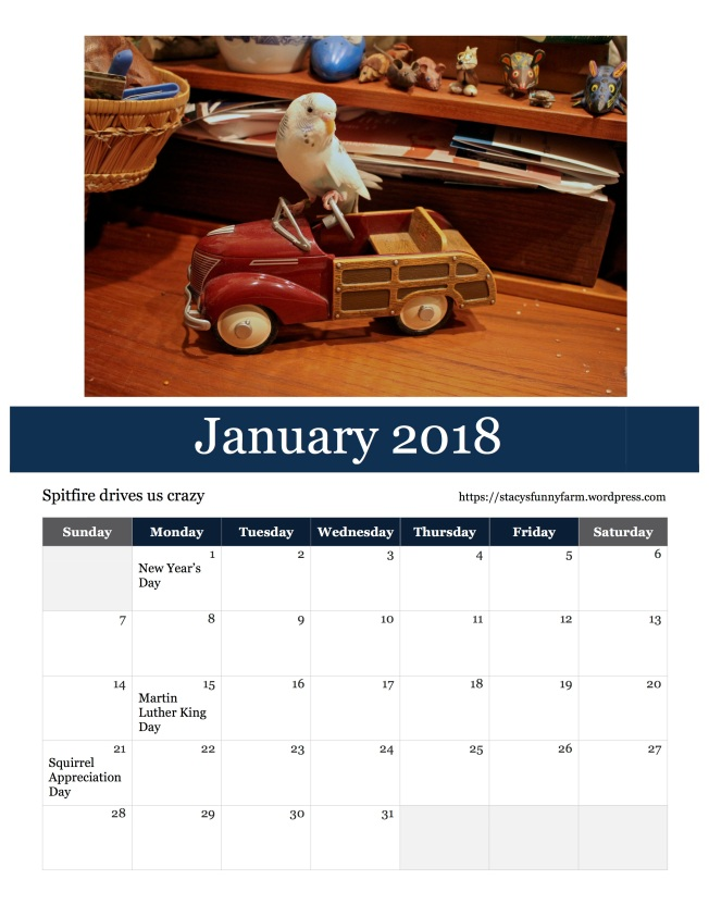 2018 jan SFF calendar