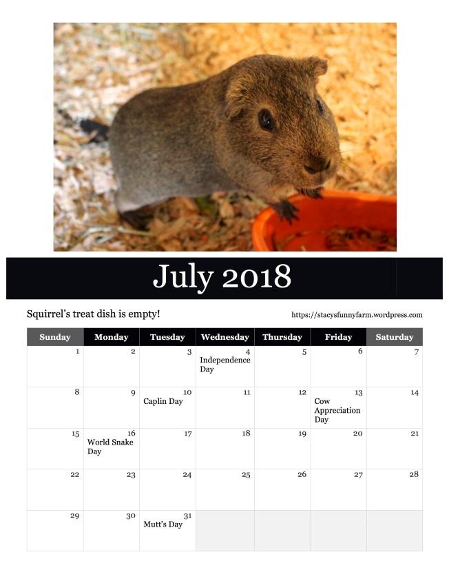 2018 july SFF calendar