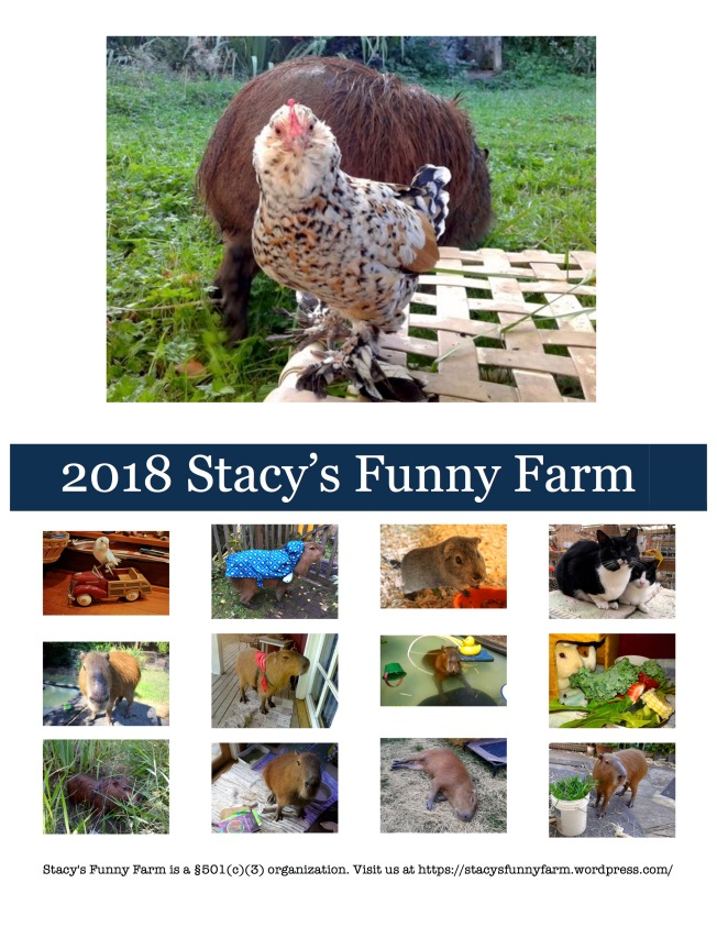2018 SFF calendar